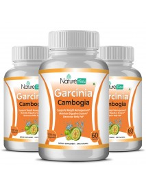 Naturefacts Garcinia Combogia  - 3 Bottle pack