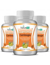 Garcinia Combogia Herbs - 3 Botles