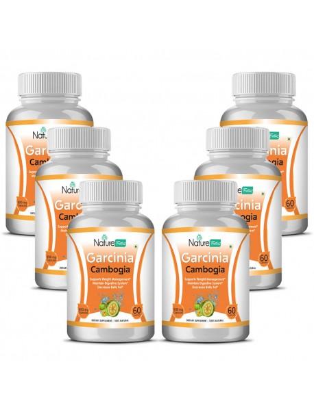 Naturefacts Garcinia Combogia  - 6 Bottle pack